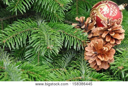 Green Christmas Tree with Red Ball and Pine Cone Decorations