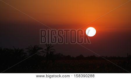 Beautiful sunset at Okavango Delta in Botswana, Africa