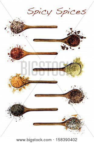 Collection of Various Spices in Wooden Spoons: Salt with Chili Salt with Cayenne Pepper Dried Paprika Cumin Powder Curry Powder Coriander Thyme and Salt with Petals with Inscription isolated on White background