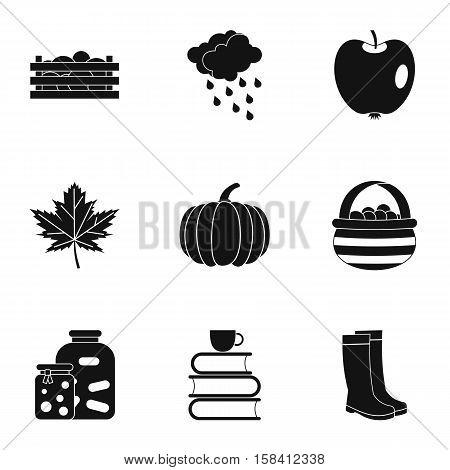Season of year autumn icons set. Simple illustration of 9 season of year autumn vector icons for web