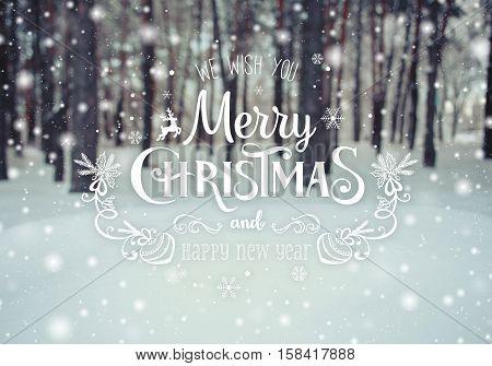 Christmas background with fir trees and blurred background of winter with text Merry Christmas and Happy New Year. Frosty winter landscape in snowy forest