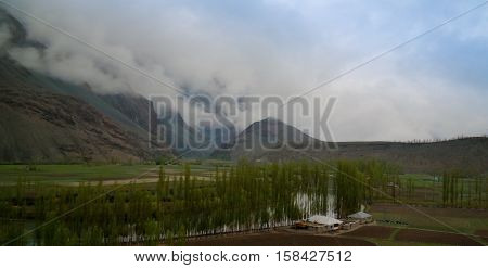 Agriculture fields near Gahkuch village Gilgit Pakistan