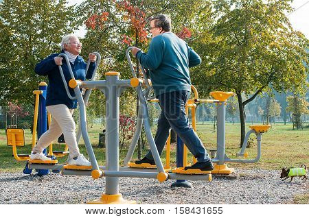 Senior couple doing exercise outdoors in park