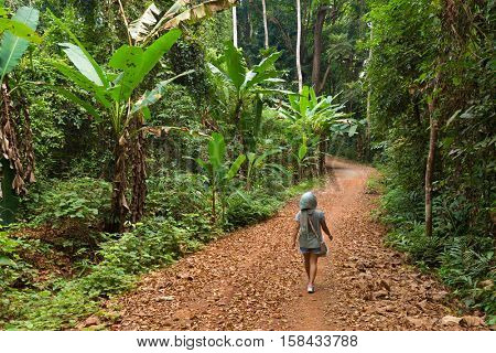 Woman walking in a lush jungle path in the Koh Kood island in Thailand