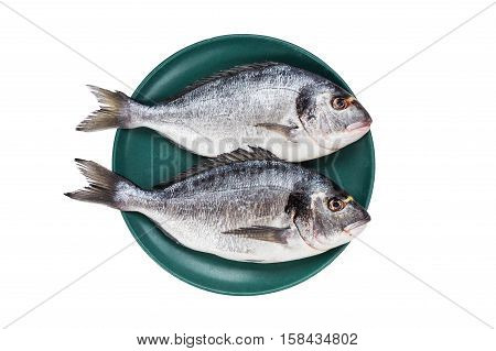 Raw Dorado Fish On Green Plate Isolated Over White Background. Top View, Copy Space