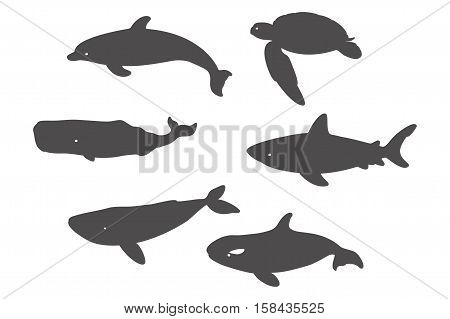 Great White Shark, Sea Turtle, Atlantic Bottlenose Dolphin and Whales. Vector illustration. Isolated on a White background.