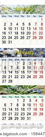 office calendar for January February and March 2017 with pictures of nature. Wall calendar for first quarter of 2017