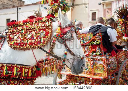 Closeup view of a horse head of a siclian cart and its ornamental harness