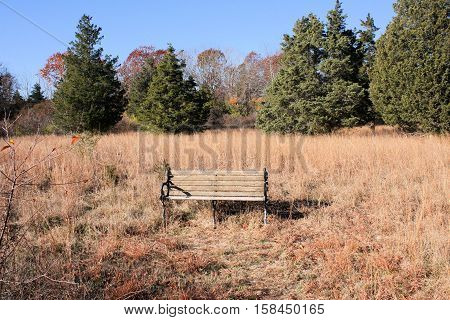 A park bench sitting in an open field on a sunny autumn day.