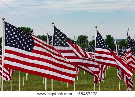 Field of Flags Celebration on Memorial Day