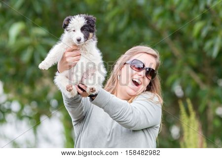Small Border Collie Puppy In The Arms Of A Woman
