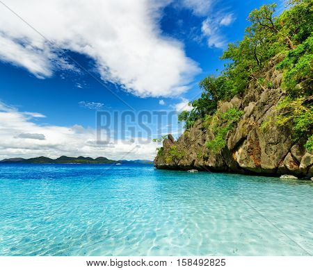 Tropical Seashore