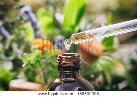 Variety Of Herbs And Dropper
