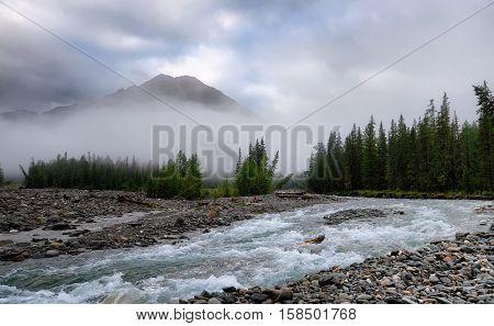 Foggy morning on river Shumak in July. Eastern Siberia. Sayan Mountains. Russia