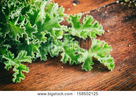 Fresh Citronella Leaves On Wooden Background