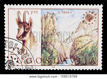 YUGOSLAVIA - CIRCA 1983 : Cancelled postage stamp printed by Yugoslavia, that shows National park Sutjeska.