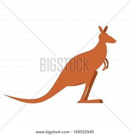 Kangaroo Isolated. Wallaby On White Background. Australian Animal