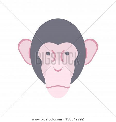 Monkey Face Isolated. Chimpanzee Head. Primacy Of Person