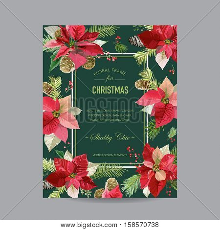 Vintage Poinsettia Christmas Card - Winter Background - in Vector