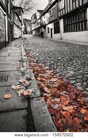 Old cobbled street in black and white with fallen leaves in colour. viewed from low angle close to the kerb