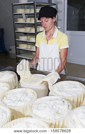 Cheesemaker Preparing Fresh Cheese