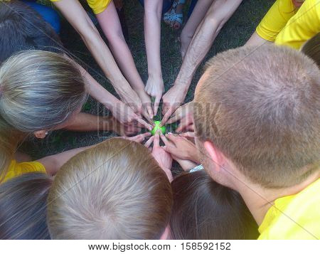 Top view of happy group of young people putting hands together showing finger gesture.Many hands pointing with their fingers to the center on green sphere.Team showing unity with their hands.