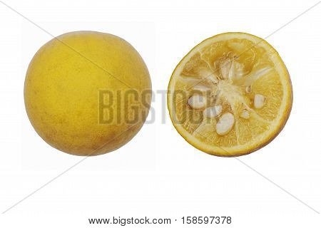 Trifoliate citrus (Poncirus trifoliata). Called Japanese bitter orange Hardy orange and Chinese bitter orange also. Image of fruits isolated on white background