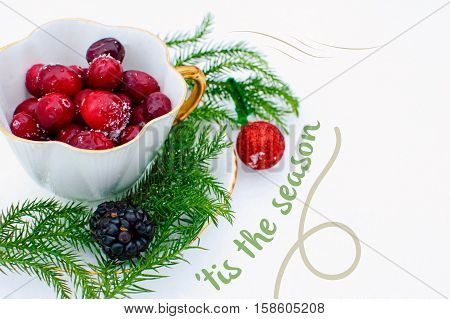 'Tis the season Christmas card message with cranberry in nature background. A vintage tea cup with gold on Fresh Falling Snow Filled with red Winter Berries and copy space. Christmas tree branches and sparkly red ornament. Cranberry cranberries with snow.