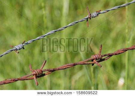 Barbed wire / rust and rusty barbed wire