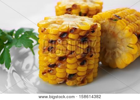Closeup of delicious grilled corncobs on white plate