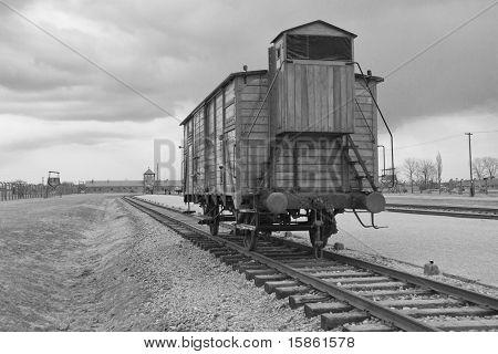 Transport Train - Auschwitz II Birkenau