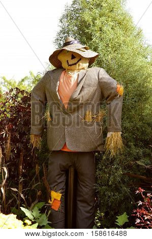Scarecrow a strawman made from old clothes and straw