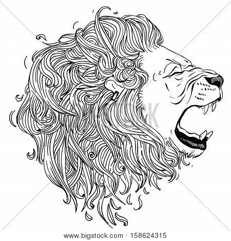 lion vector head. lion hand drawn gnarling profile