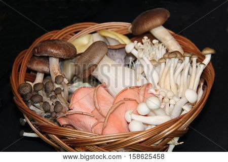 A Wicker Basket Holding a Variety of Edible Mushrooms.