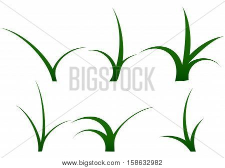Stalk of grass set. Grass isolated and grass vector illustration