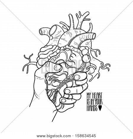 Graphic hand grasping human heart. Vector card isolated on the white background. Coloring book page design for adults and kids. Tattoo art