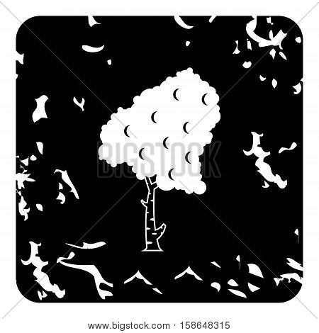 Birch tree icon. Grunge illustration of birch vector icon for web design
