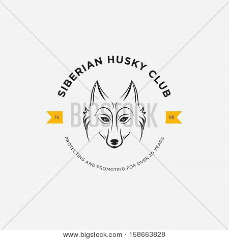 Vector image of a dog siberian husky design on white background and yellow background Logo Symbol Animals. Siberian Husky Club