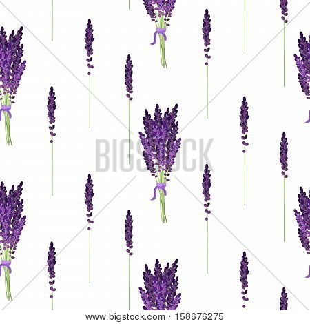 Lavender seamless vector pattern. Provence violet lavender field flower background. Lavender bouquet bush.