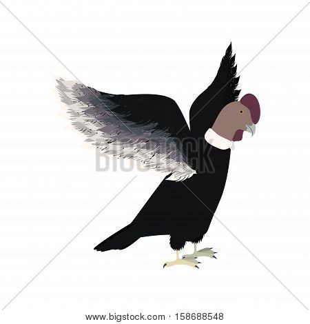 condor animal bird icon with opened wings vector illustration