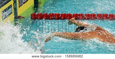 Hong Kong China - Oct 29 2016. South African competitive swimmer SCHOEMAN Roland (RSA) in the finish. FINA Swimming World Cup Preliminary Heats Victoria Park Swimming Pool.
