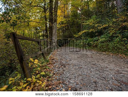 Wide Trail and Railing in Fall off of the Blue Ridge Parkway