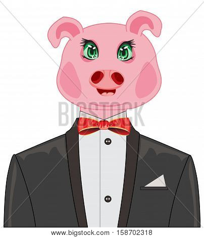 Comic portrait to pigs in suit on white background
