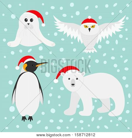 Arctic polar animal set. White bear owl king penguin Emperor Aptenodytes Patagonicus Seal pup baby harp Red Santa hat Merry Christmas card. Winter antarctica blue snow background Flat design Vector