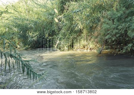 View of the slow river flow and the bushes growing along the banks of the Jordan River in Israel on sunny day close-up.