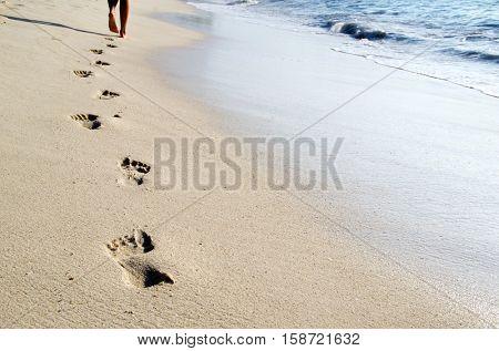 Footprints in wet sand of beach