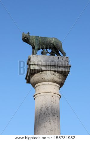 She-wolf suckling Romulus and Remus the twin founders of Rome