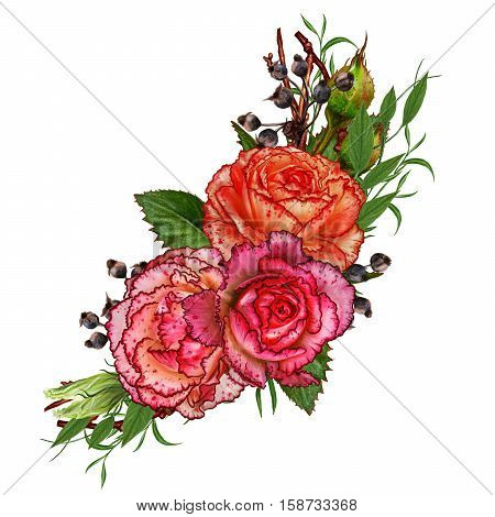 Flower composition. The branch of roses. Beautiful orange disclosed rose buds leaves. Isolated on white background.