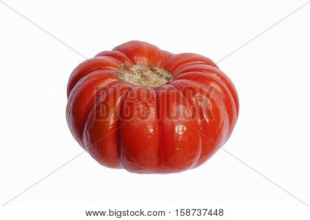 Pumpkin on a stick (Solanum integrifolium). Called Ornamental eggplant also. Image of pumpkin isolated on white background
