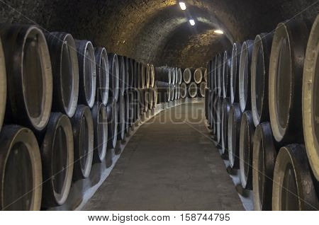 Oak barrels with wine in the sellars of the Sunny Valley winery Crimea. Crimea.